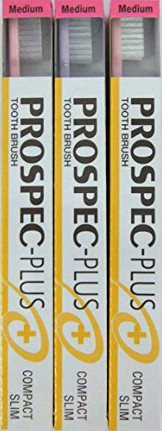 前件シェルター検出GC プロスペック 歯ブラシプラス コンパクトスリム M (3本セット)