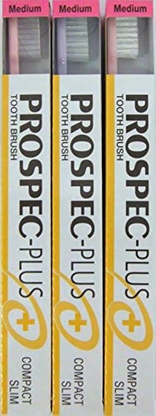 羊の贈り物礼拝GC プロスペック 歯ブラシプラス コンパクトスリム M (3本セット)