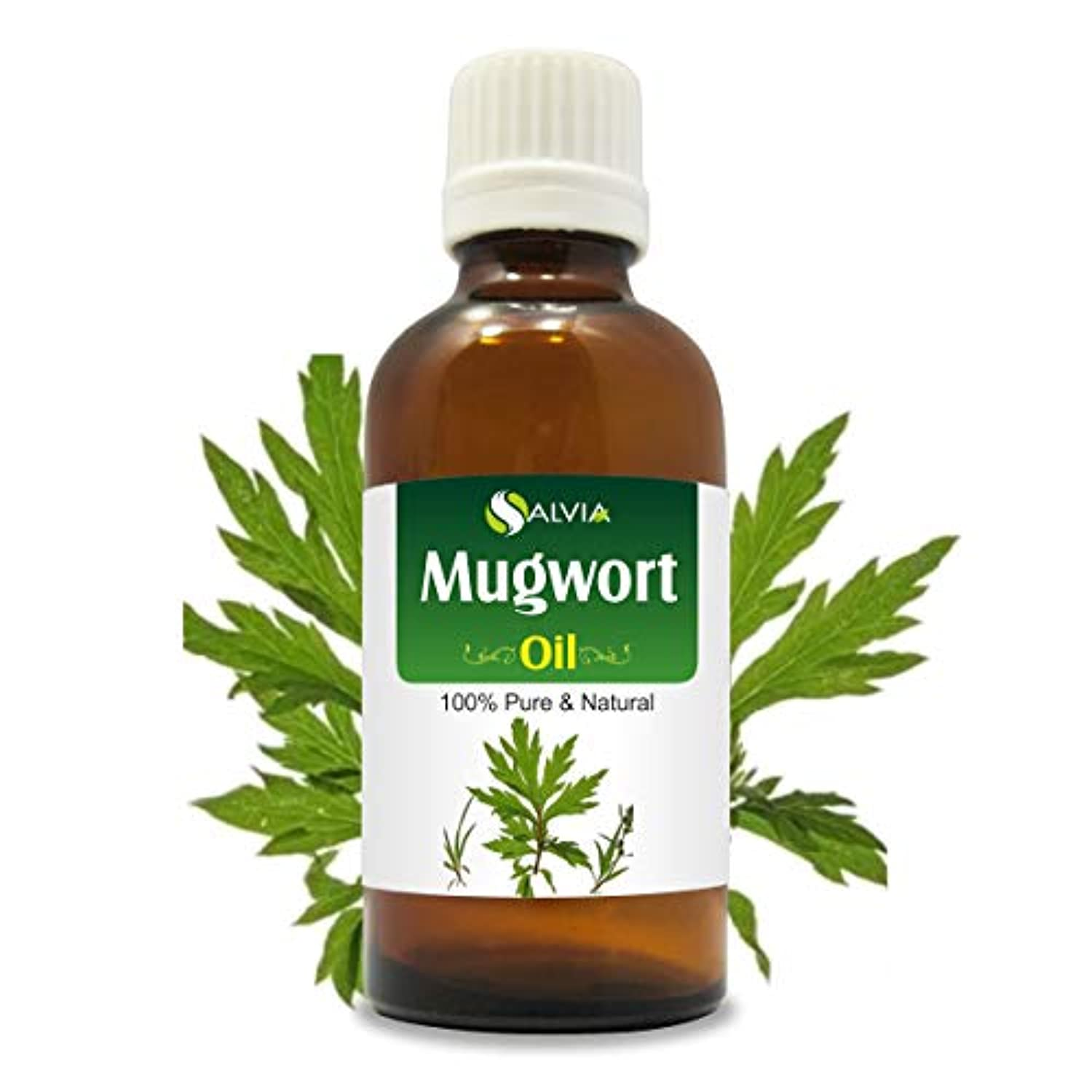 トースト歩く押すMugwort (Artemisia Vulgaris) 100% Natural Pure Essential Oil 15ml