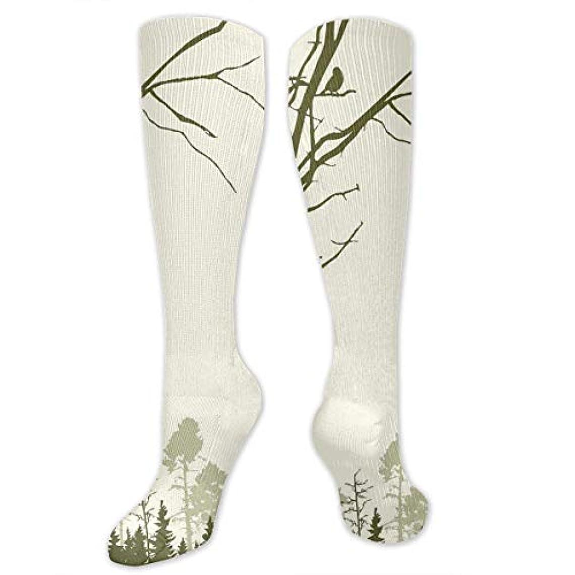 まっすぐにする不潔熟達した靴下,ストッキング,野生のジョーカー,実際,秋の本質,冬必須,サマーウェア&RBXAA Nature Theme Birds On Tree Branches, Socks Women's Winter Cotton Long...