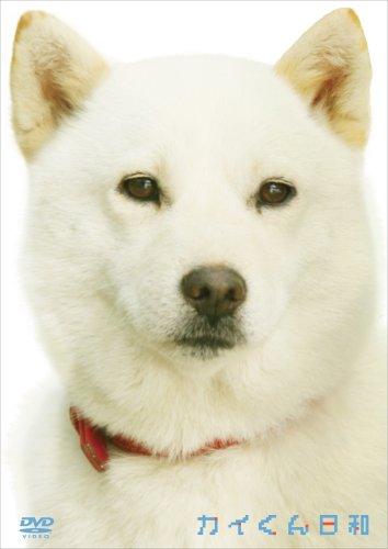 ソフトバンクのお父さん犬・カイくん、お父さん役を引退