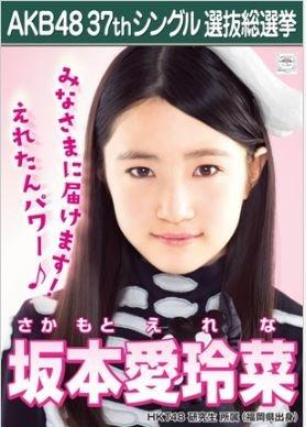 【坂本愛玲菜】ラブラドール・レトリバー AKB48 37th...