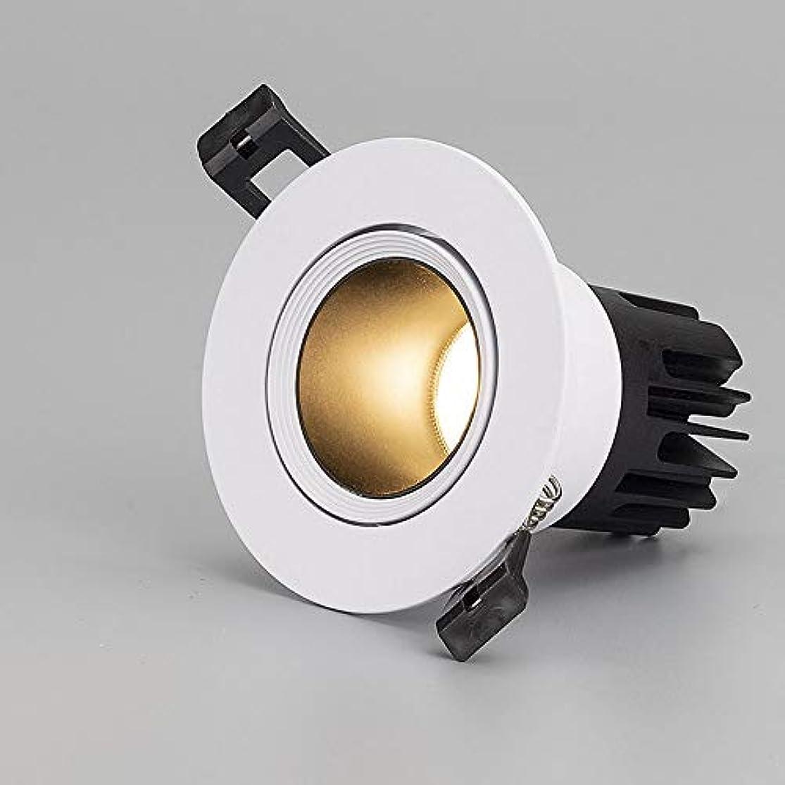 嫌なストッキング続編AEDWQ 5ワット/ 7ワット/ 10ワット/ 15ワット/ 20ワット/ 30ワット凹型シーリングライトLEDダウンライト角度調整3000K / 4000K / 6000K CETLus認定、111V-240V (Color : White light -20w)