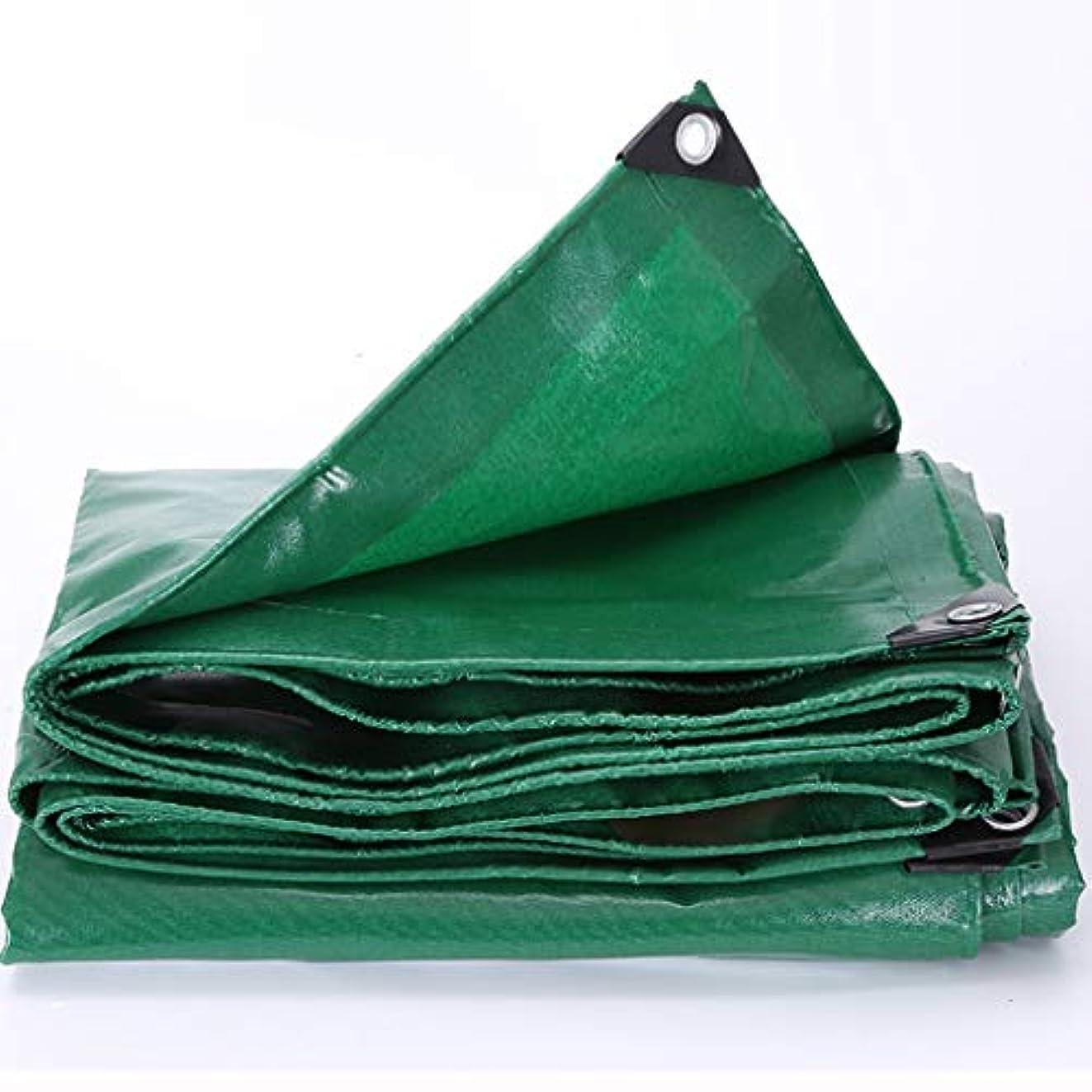 仮装混乱天のアウトドア 防水シートオーニング避難所/厚い日除けクロス車の防水シート屋外用カバークロス高品質耐摩耗性プル テント (Color : Green, Size : 300*300cm)