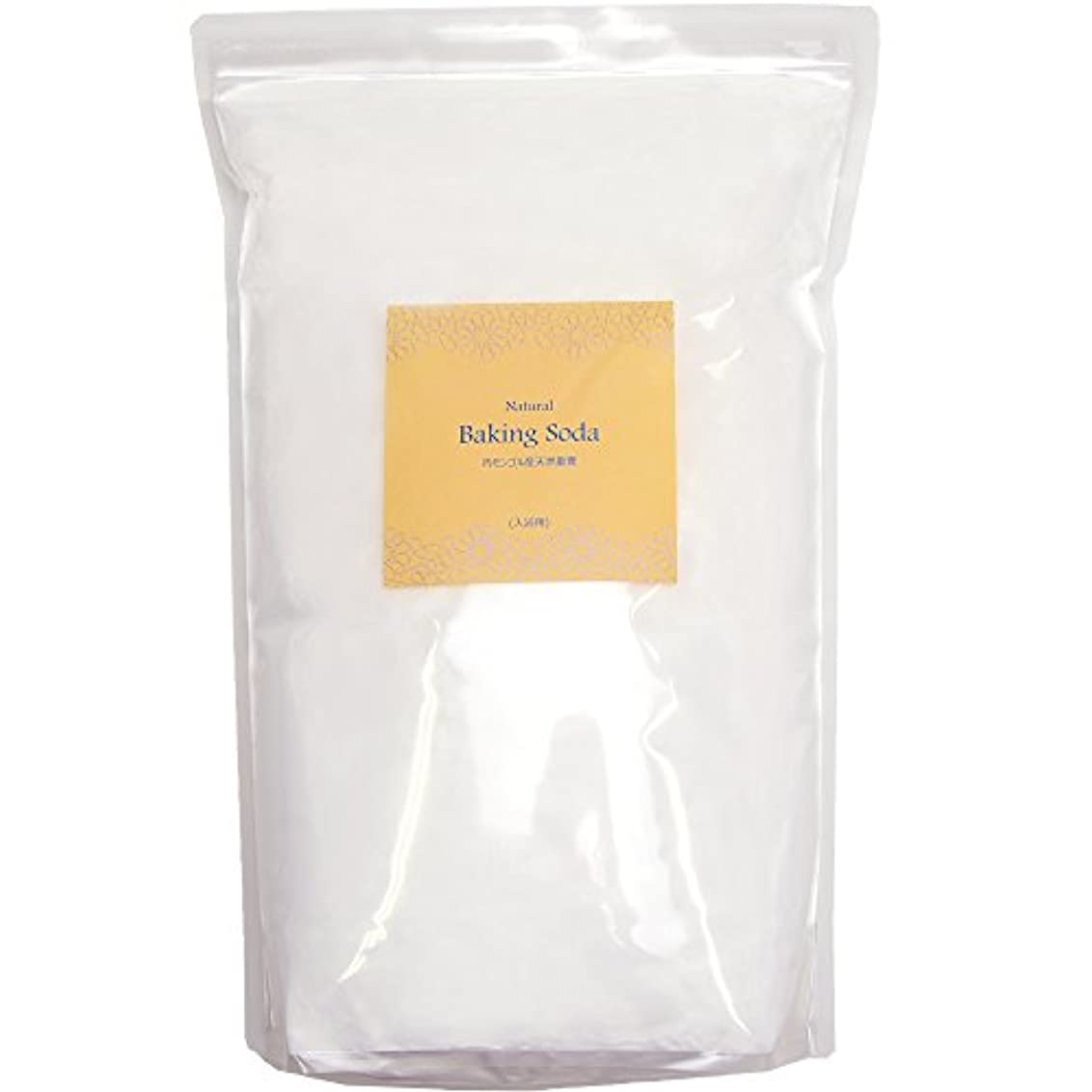 アースコンシャス 天然重曹 入浴用 内モンゴル産 (10kgパック / 入浴剤 原料) 計量スプーン付き 大容量 [エプソムソルトとのブレンドもお薦め] 合成着色料?合成香料?防腐剤 無添加