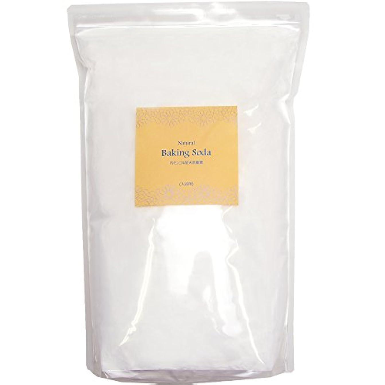 アクチュエータとらえどころのないカップルアースコンシャス 天然重曹 入浴用 内モンゴル産 (10kgパック / 入浴剤 原料) 計量スプーン付き 大容量 [エプソムソルトとのブレンドもお薦め] 合成着色料?合成香料?防腐剤 無添加