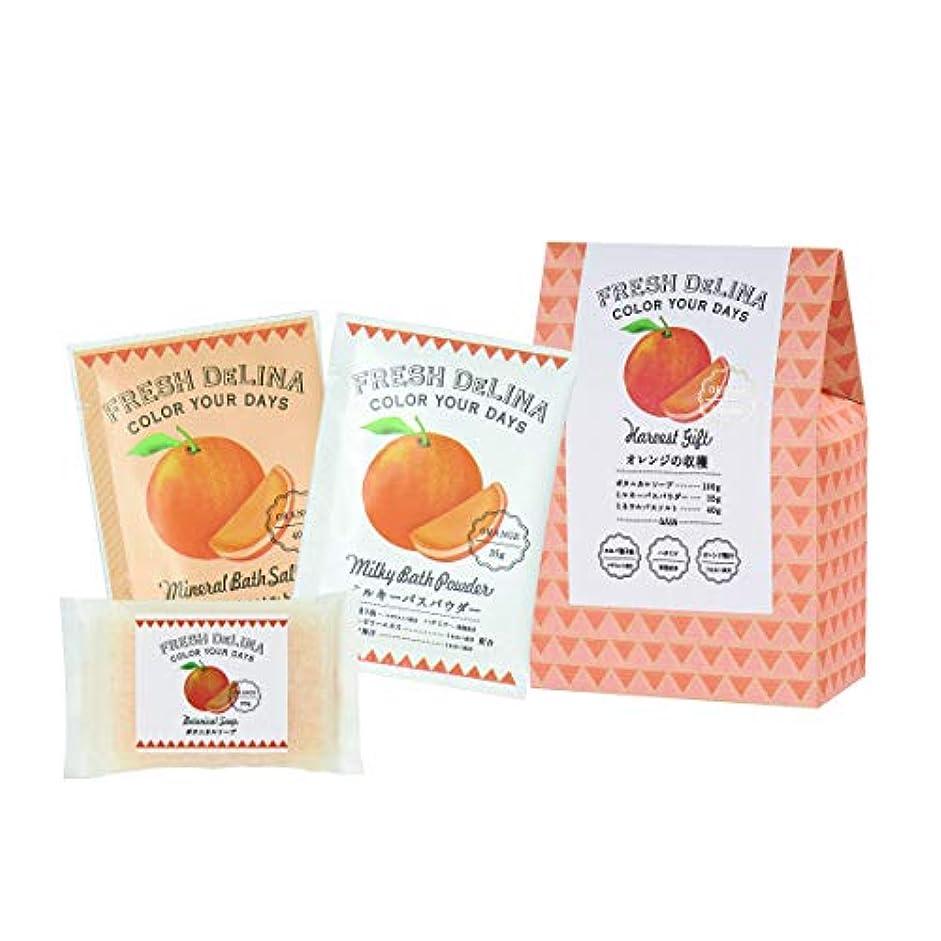 世界的に隠された放散するフレッシュデリーナ ハーベストギフト オレンジ (ミルキバスパウダー35g、ミネラルバスソルト40g、ボタニカルソープ100g 「各1個」)