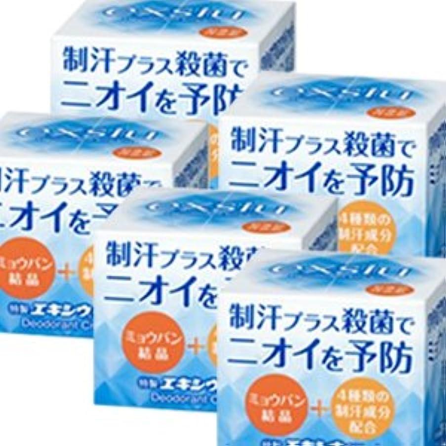 自伝官僚文字通り【5個】 特製エキシウクリーム 30gx5個 (4987145200228)