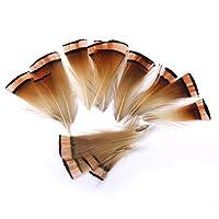 約50pcs ルースターコック 装飾用の羽根 雉の羽根 工芸品 羽飾り ヘアアクセサリー 3~6センチメートル キジの羽 装飾 手芸 手作り用 羽飾り フェザー 50枚 5~9センチメートル キジの羽 装飾 手芸 手作り用 羽飾り フェザー 50