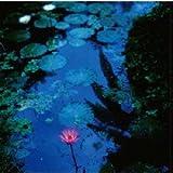 リ・ン・ガ・フ・ラ・ン・カ DELUXE (Lingua Franca - An Edition Deluxe -)