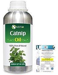 Catnip (Nepeta cataria) 100% Natural Pure Essential Oil 2000ml/67 fl.oz.