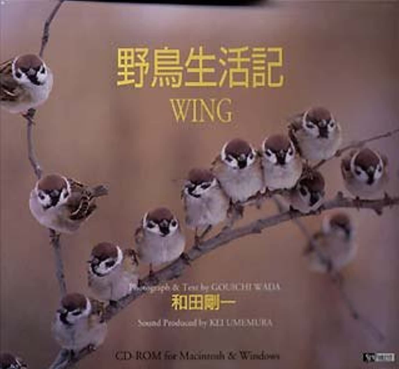 前奏曲公平な政権野鳥生活記 Wing