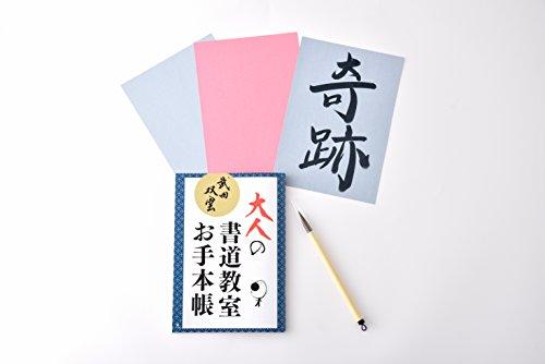 武田双雲 水で書ける大人の書道教室 ([バラエティ])