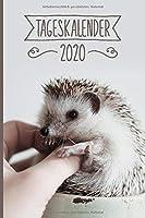 Tageskalender 2020: Igel Terminkalender ca DIN A5 weiss ueber 370 Seiten I Jahreskalender I Terminplaner I Tagesplaner