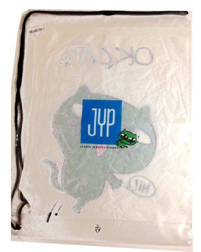 2PM テギョン デザイン OKCAT ビニールバッグ