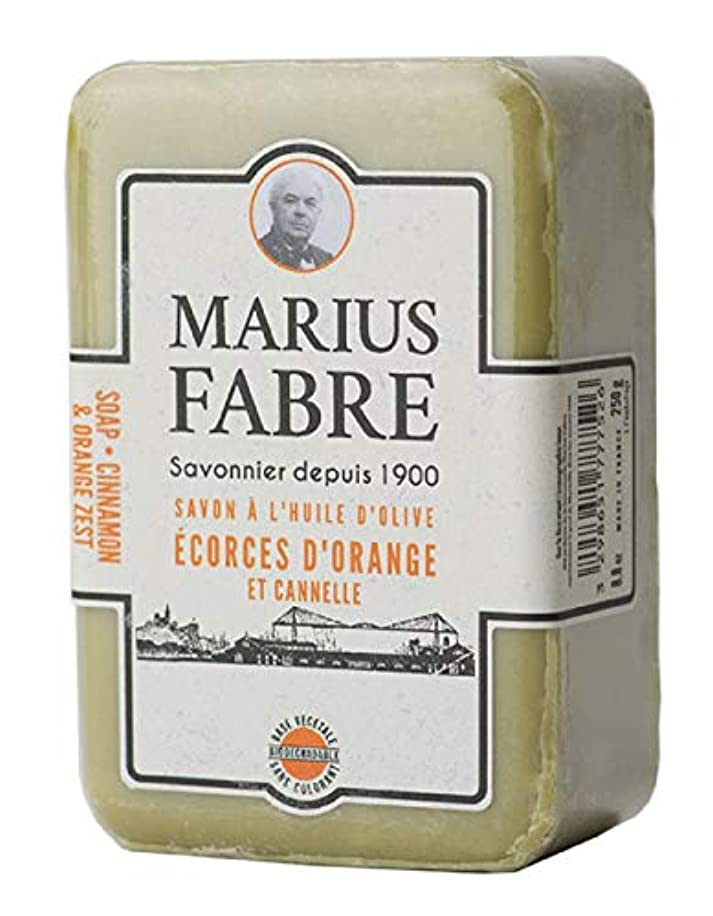 再編成する使い込む言い訳サボンドマルセイユ 1900 シナモンオレンジ 250g