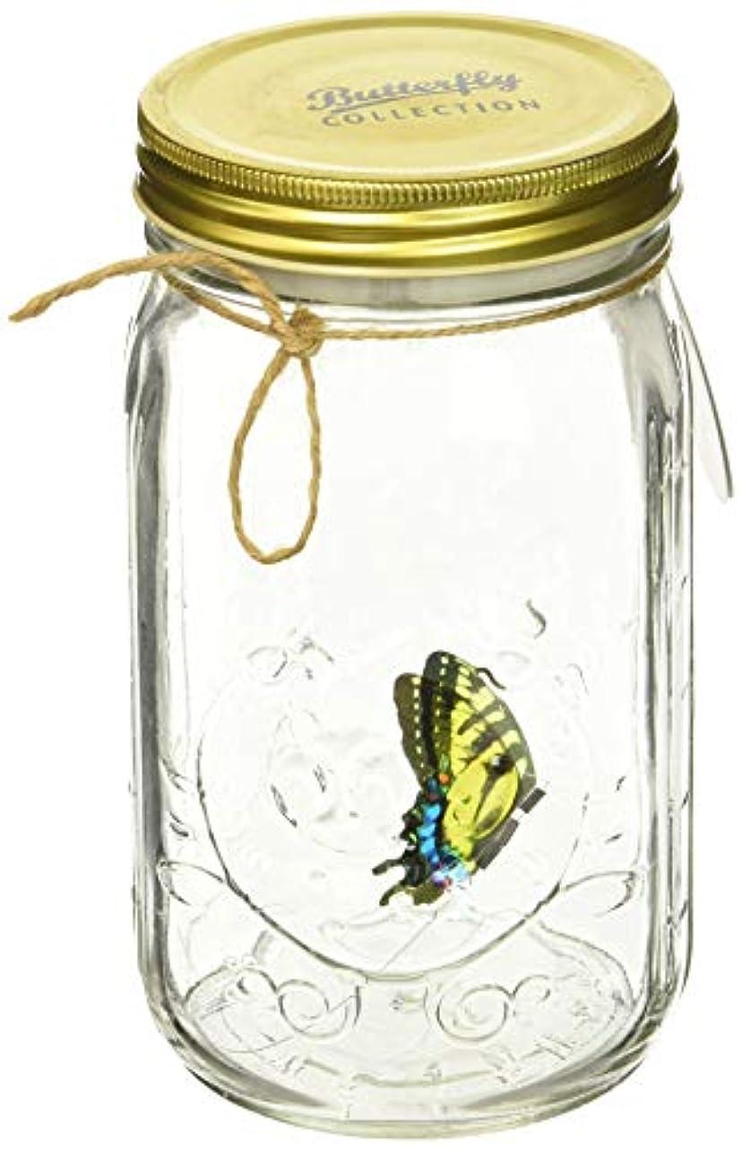 動的利得同性愛者My Butterfly Collection - Animated Butterfly in a Jar - Yellow Swallowtail by My Butterfly Collection