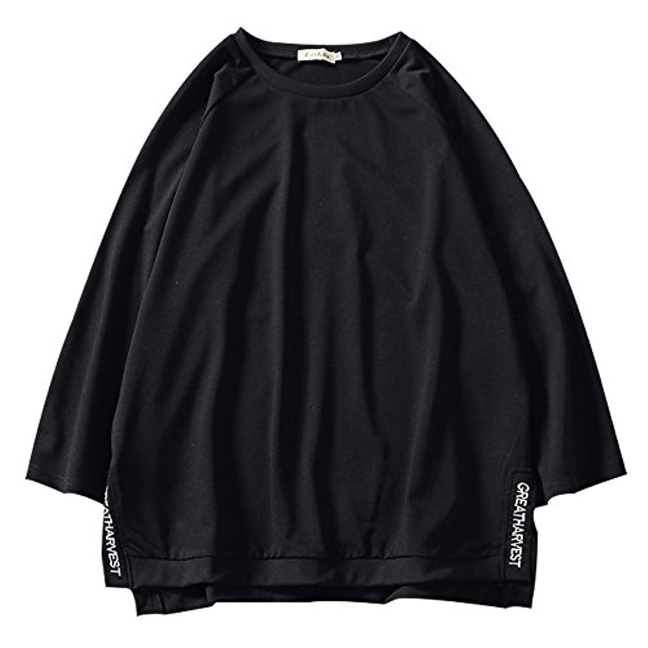 マイクロ耐えられない熱(ルパンプル) Le Pampre Tシャツ メンズ ビッグT ビッグシルエット オーバーサイズ 7分袖 ゆったり 18SS CQ1521
