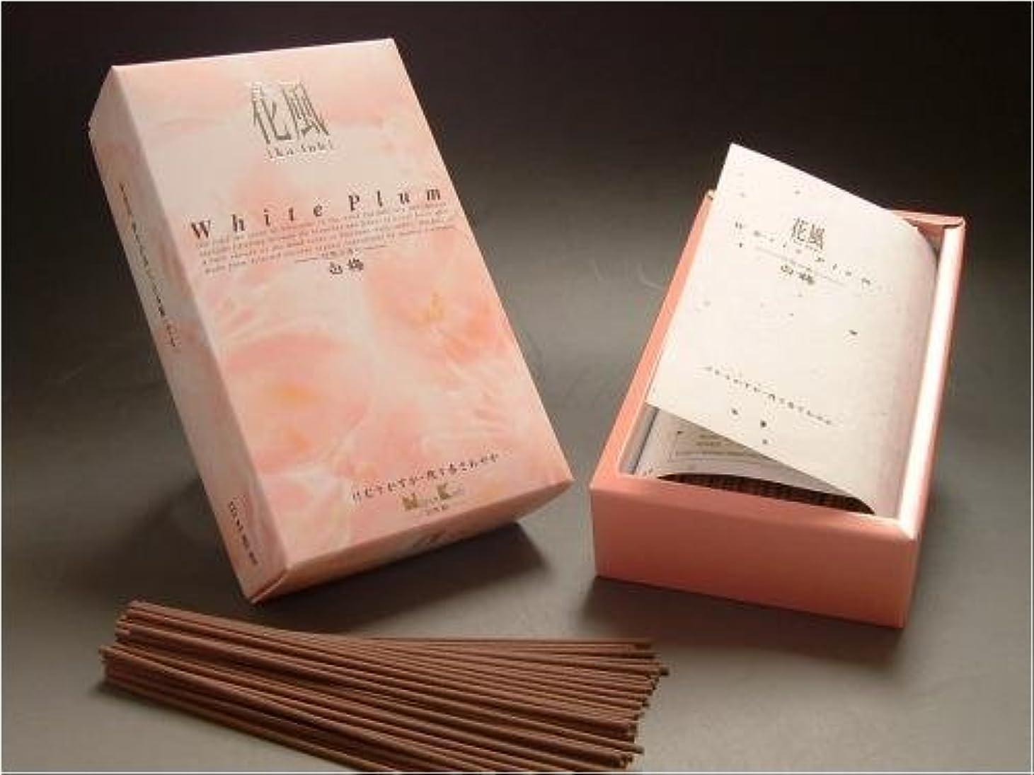イソギンチャク今日腐食する日本香堂 花風白梅 お徳用サイズ