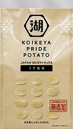 湖池屋 KOIKEYA PRIDE POTATO うす塩味 63g×12袋