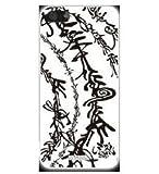 iPhone SE iPhone5S iPhone5対応/専用ケース 牙狼 ガロ GARO 背面カバー液晶保護フィルム付き (魔道文字)