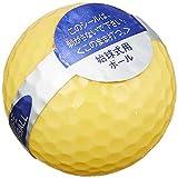 ダイヤ(DAIYA) 始球式ボール フラッシュボール GF-014