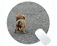 円形のマウスパッド、犬の子犬のソーセージブラウンの小さいかわいい賭博のマウスパッド
