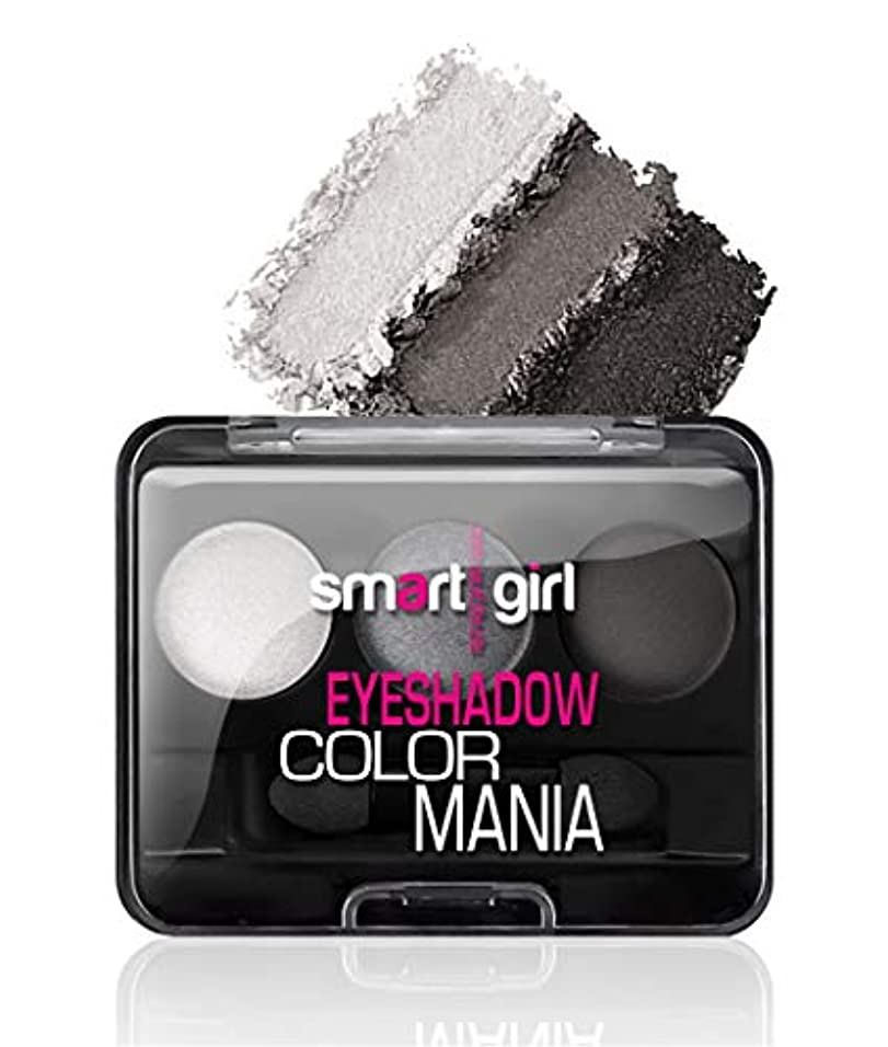 路面電車大臣化学薬品BelorDesign | COLOR MANIA EYESHADOW (Gray)