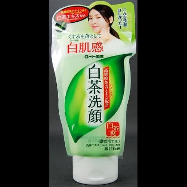 ポーンセンチメートル縫う【まとめ買い】白茶爽 白茶練り石鹸 ×2セット
