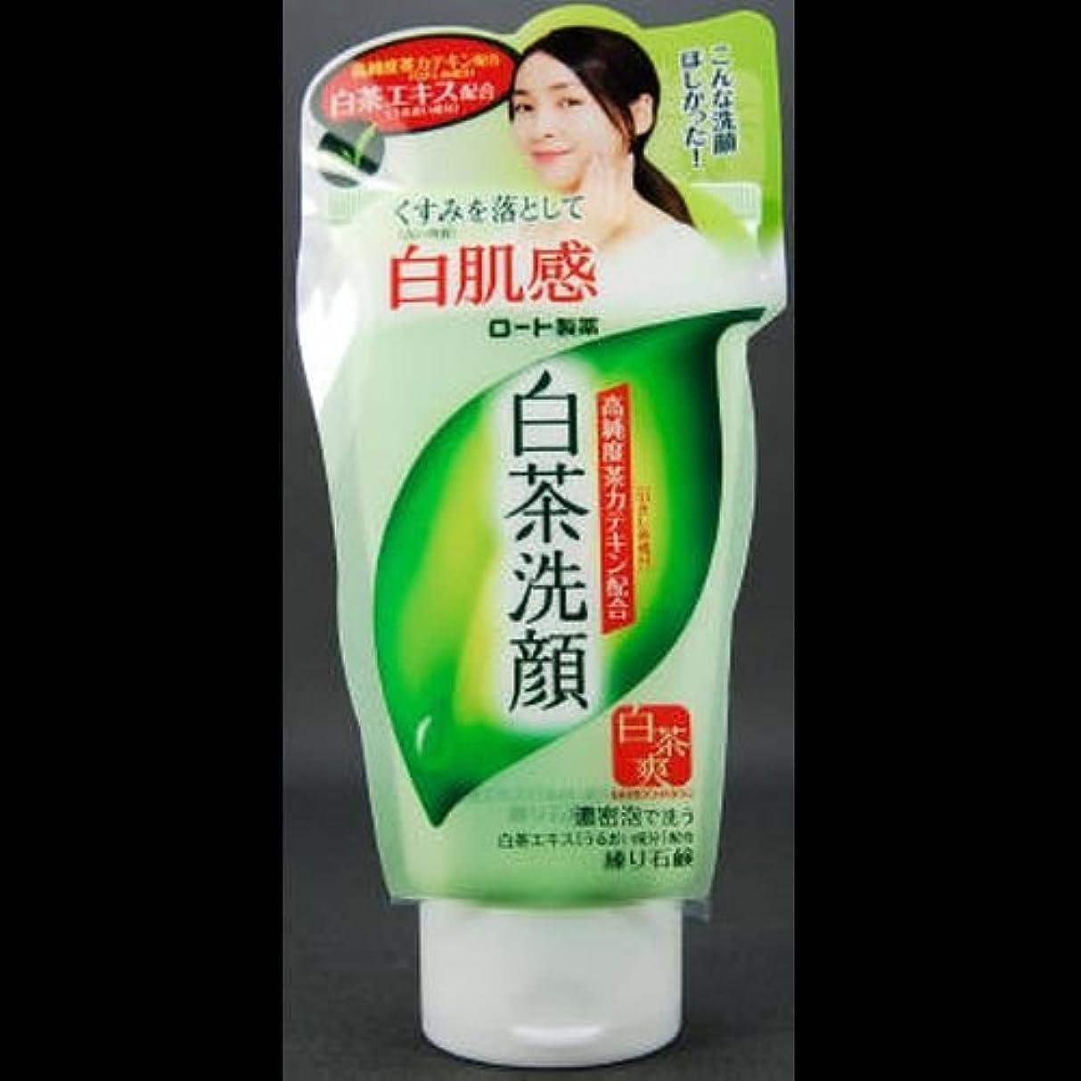 消す不変入る【まとめ買い】白茶爽 白茶練り石鹸 ×2セット
