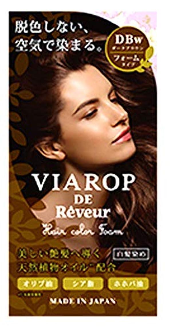 リーク博覧会【空気と反応して染まる!脱色剤フリーの白髪染め】VIAROP DE Reveur ヴィアロップ白髪用カラーフォーム(ダークブラウン)