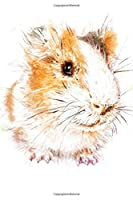 Notebook: for guinea pig lovers