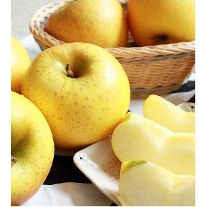 青森 りんご 家庭用 訳アリ 【葉とらずりんご シナノゴールド5kg ファーム】(13-23玉)
