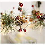 Nrpfell Red Berry Christmas Garland Lights LED Copper Fairy Lights Pinecone String Lights for Xmas Holiday Tree and Home Decoration