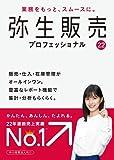 弥生販売 22 プロフェッショナル パッケージ版