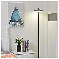 MWNV 寝室のための居間のオフィスの主ライト、掛かるドラムライトが付いているオフィスの高いポーランド人ランプのための床ランプ-LEDランプ -フロアスタンド・ランプ (色 : B)