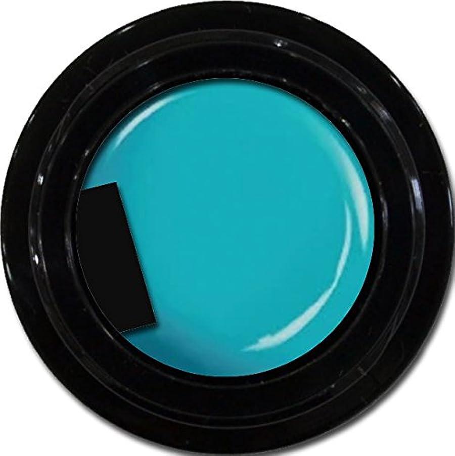 に沿ってプロフェッショナル誇張カラージェル enchant color gel M707 CanalBlue3g/ マットカラージェル M707カナールブルー 3グラム
