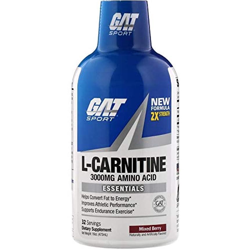 援助するサークル輪郭GAT, 液状L-カルニチン、ミックスベリー、3000mg、473ml
