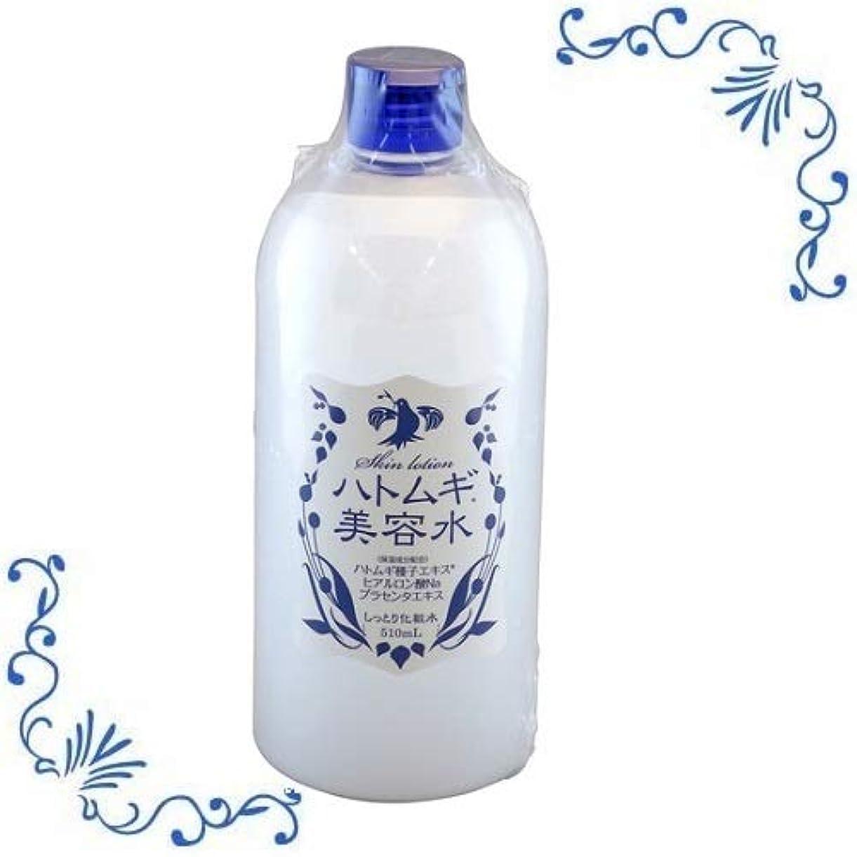 徹底的にレッスン一般化するハトムギ美容水 510ml