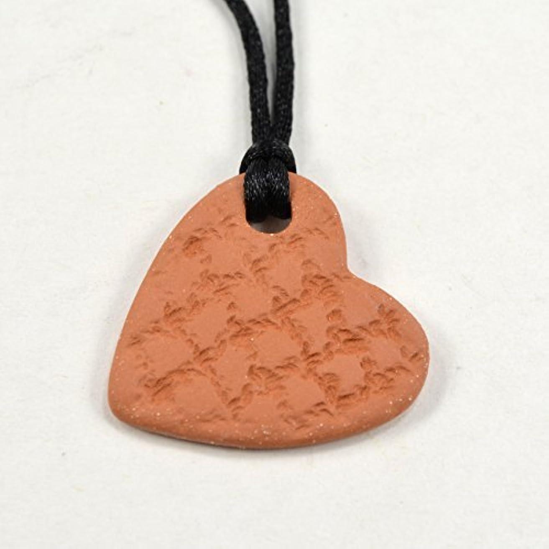 賢明な明確な相対的Heart Essential Oil Diffuser Necklace Aromatherapy Pendant with Adjustable Sliding Knot Cord [並行輸入品]