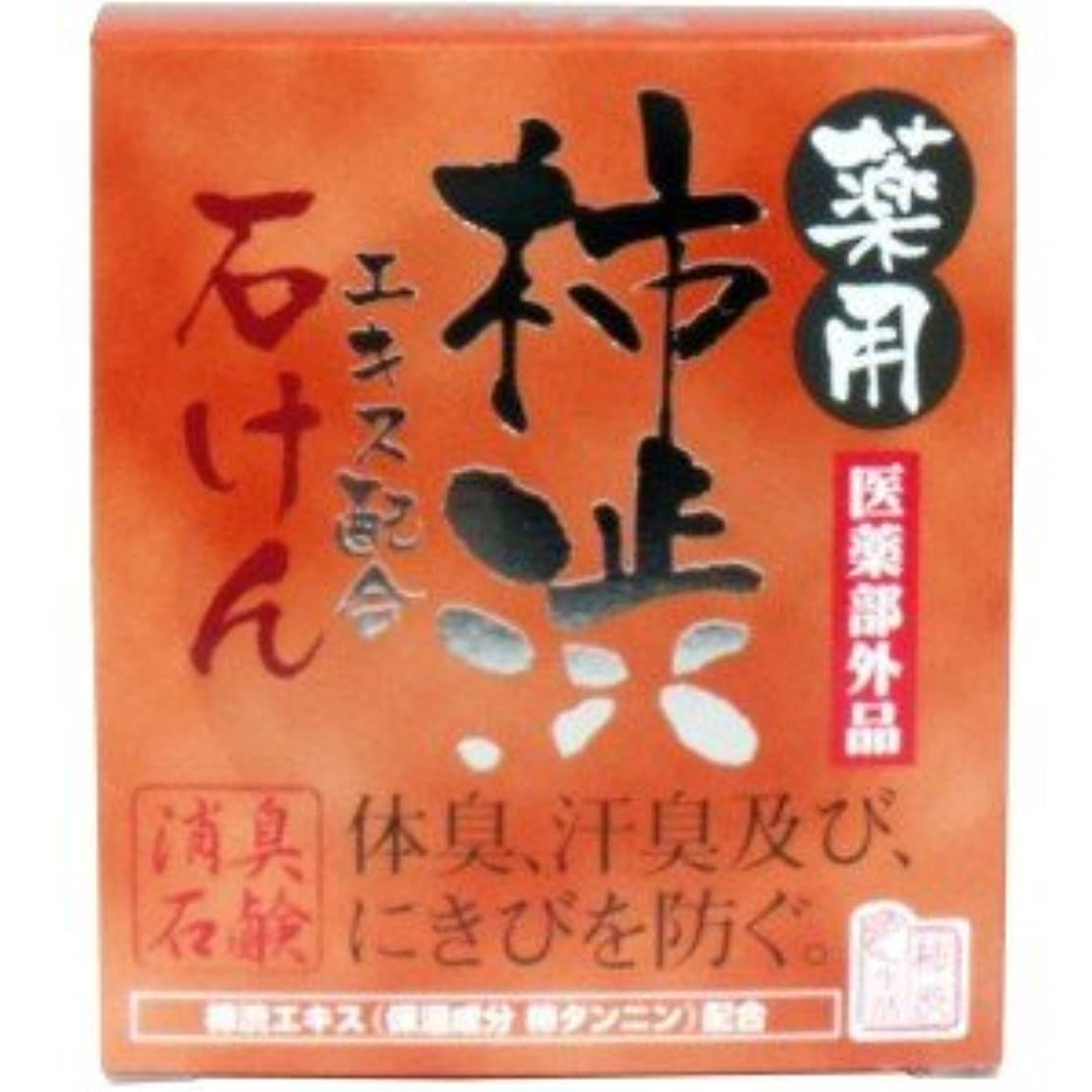 メトロポリタン引き算泥(2017年春の新商品)(マックス)薬用 柿渋エキス配合石けん 100g(医薬部外品)(お買い得3個セット)