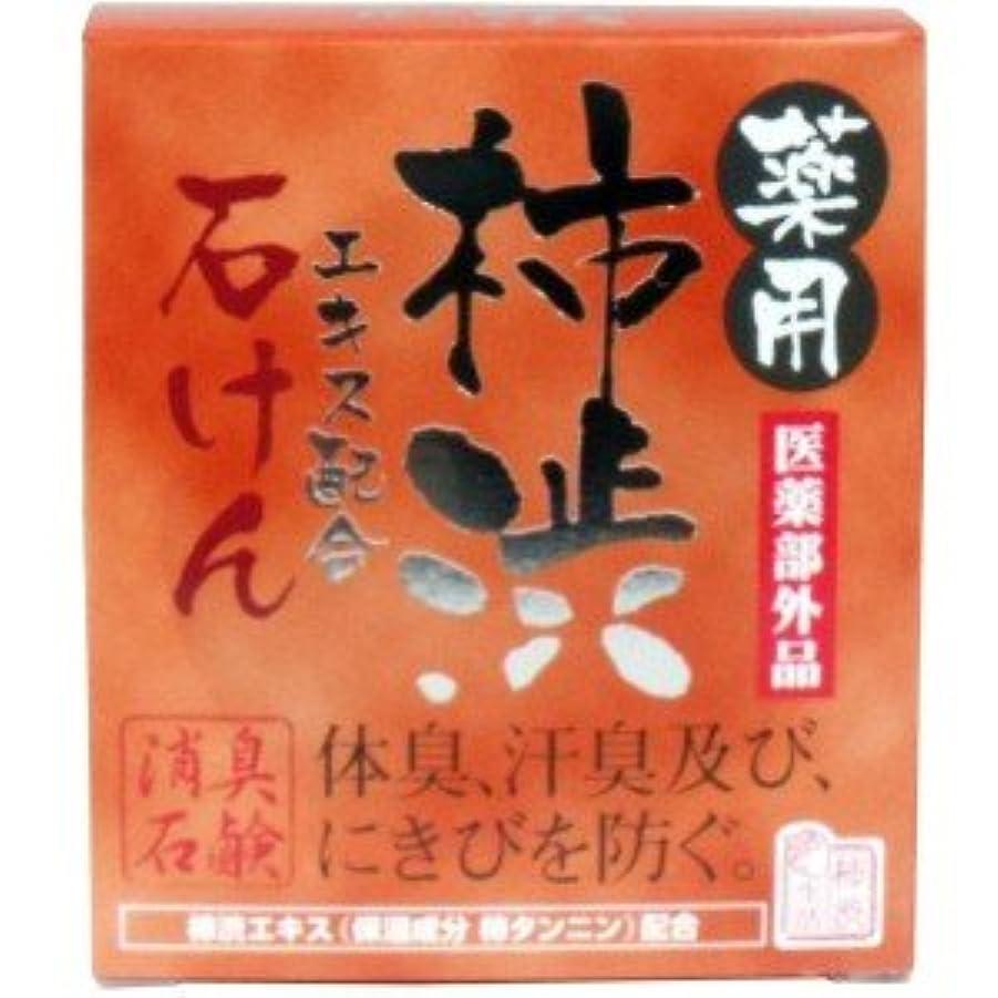 圧縮された些細な劇的(2017年春の新商品)(マックス)薬用 柿渋エキス配合石けん 100g(医薬部外品)(お買い得3個セット)