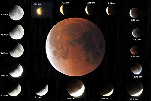 Lunar phases January 31 Blue Moon . (English Edition)
