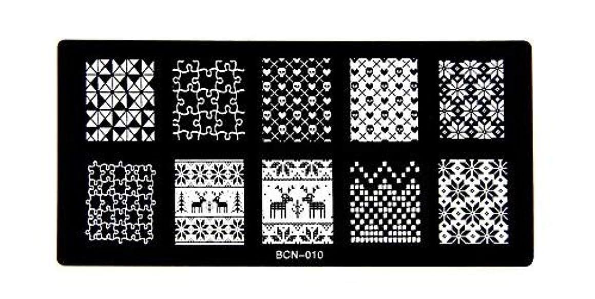 大騒ぎ時間厳守比類のない[ルテンズ] スタンピングプレートセット 花柄 ネイルプレート ネイルアートツール ネイルプレート ネイルスタンパー ネイルスタンプ スタンプネイル ネイルデザイン用品