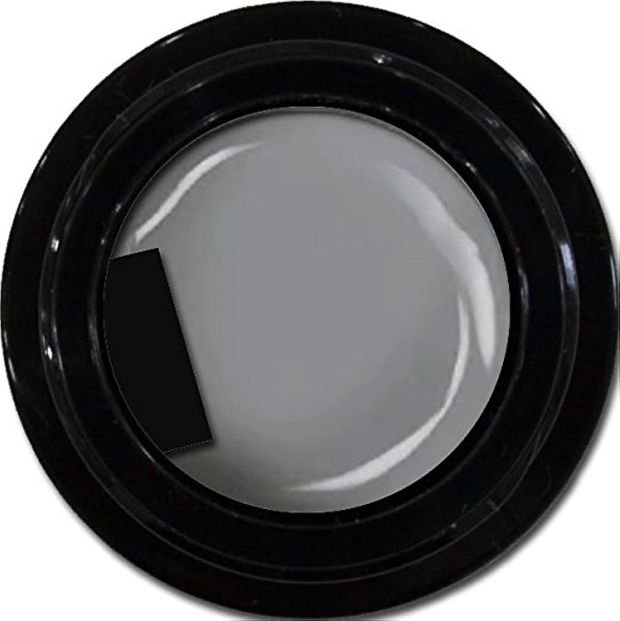 カラージェル enchant color gel M807 LegendGray 3g/ マットカラージェル M807レジェンドグレイ 3グラム