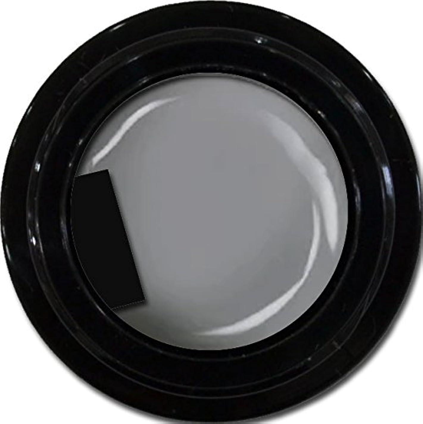 最高軍学んだカラージェル enchant color gel M807 LegendGray 3g/ マットカラージェル M807レジェンドグレイ 3グラム