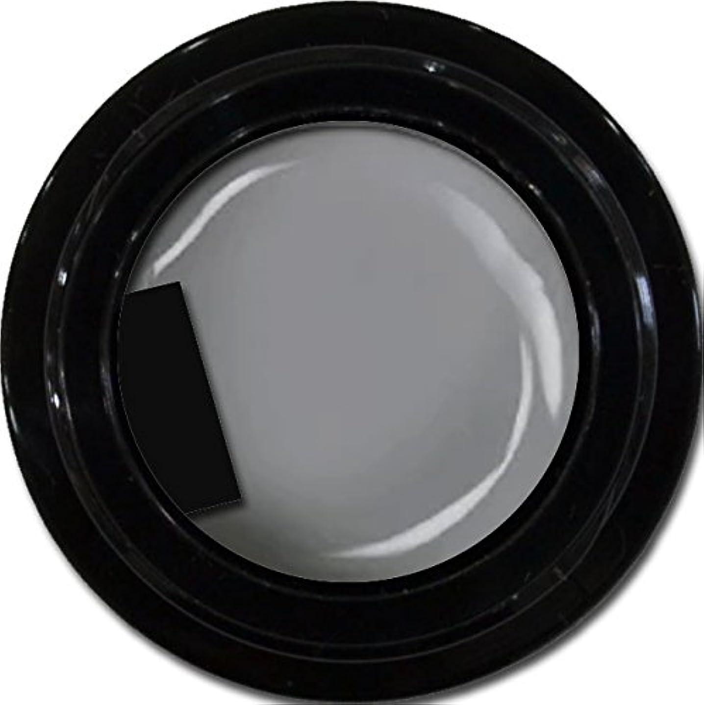 呼吸桃床カラージェル enchant color gel M807 LegendGray 3g/ マットカラージェル M807レジェンドグレイ 3グラム