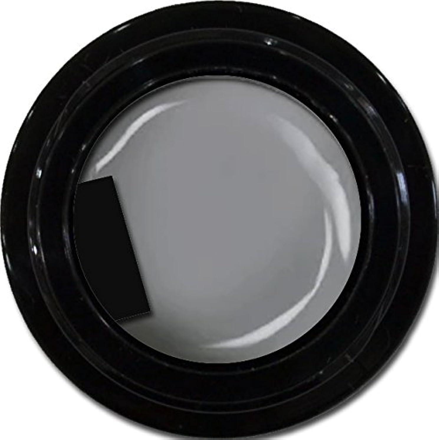 絶妙支店同情的カラージェル enchant color gel M807 LegendGray 3g/ マットカラージェル M807レジェンドグレイ 3グラム