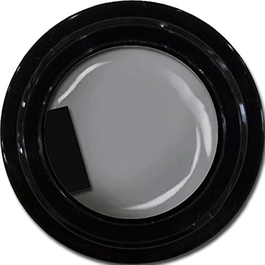 続編昼食起きているカラージェル enchant color gel M807 LegendGray 3g/ マットカラージェル M807レジェンドグレイ 3グラム