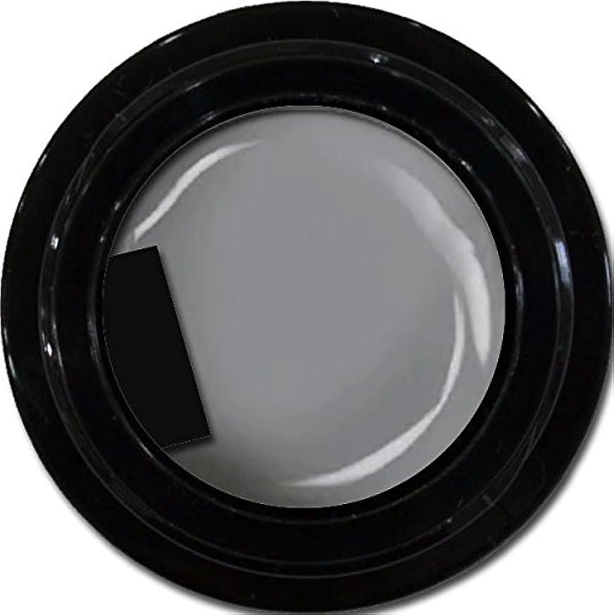 郵便番号サイクロプス悪性腫瘍カラージェル enchant color gel M807 LegendGray 3g/ マットカラージェル M807レジェンドグレイ 3グラム